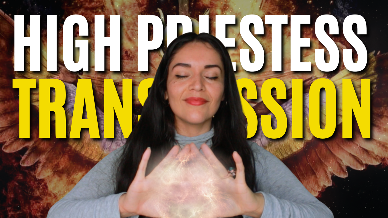 HIGH PRIESTESS TRANSMISSION